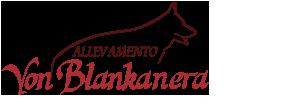 Allevamento Pastori Tedeschi - Von Blankanera